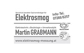 Elektrosmog Grabmann